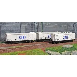 Ree modeles WB-586 Set de 3 Wagons TP FRIGO Reconstruit, Trappes à Glace / Aérateurs, SNCF, STEF, ep. III
