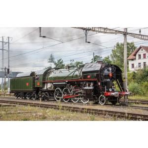 Esu S0320 Décodeur sonore, Loksound V5, pour locomotive à vapeur 141R, 1244 Mikado, SNCF